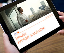 2013 ING Annual Review