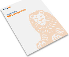 2009 Annual Report ING Verzekeringen N.V. (Insurance)
