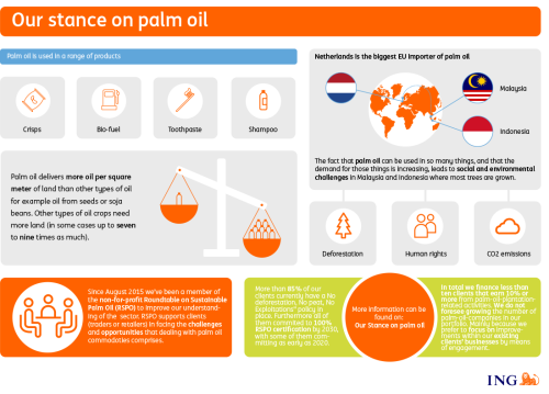 infographic: Our stance on palm oil
