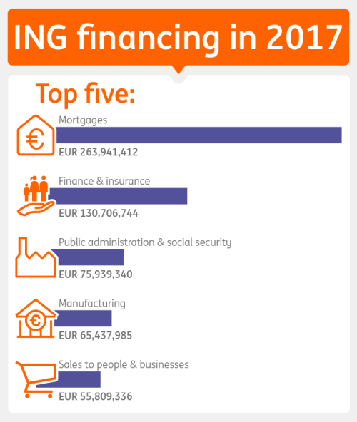 Table ING financing in 2017