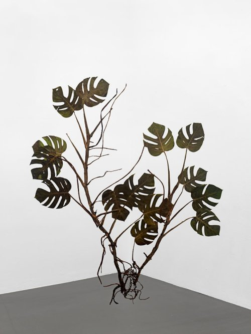 Julius von Bismarck (1983) <br><em>I like the flowers (Monstera deliciosa)</em>, 2017 <br>166 x 143 cm <br>Pressed and dried plants, mounted on stainless steel plates