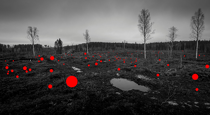 100 Mistakes Made By Previous Generations, from the series 100 Hectares, 2017 © Jaakko Kahilaniemi